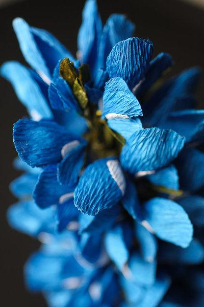 Seattle Bespoke Floral Design