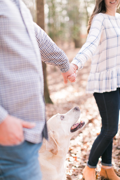 Columbia SC Engagement Session with couple holding hands together and dog walking between