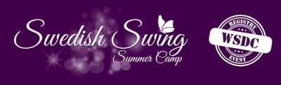 swedish swing summer camp