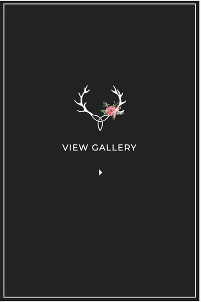 Horn Photography and Design Featured Gallery