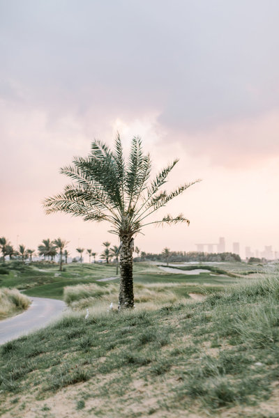 Maria Sundin Photography_Barbaranne_Thom_wedding_Saadiyat_Golf_Club_Park_Hyatt_Abu_Dhabi_web-9