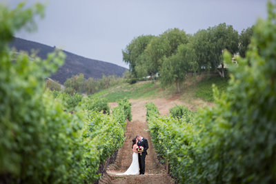Bride and Groom in vines at Leoness Winery