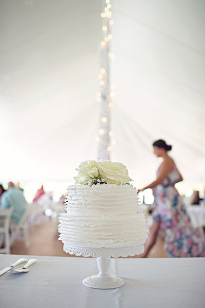 Mishelle Lamarand PhotographyMetro Detroit Wedding PhotographerAnn Arbor Wedding Photographer (36)