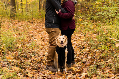 Fall Family Phots -6