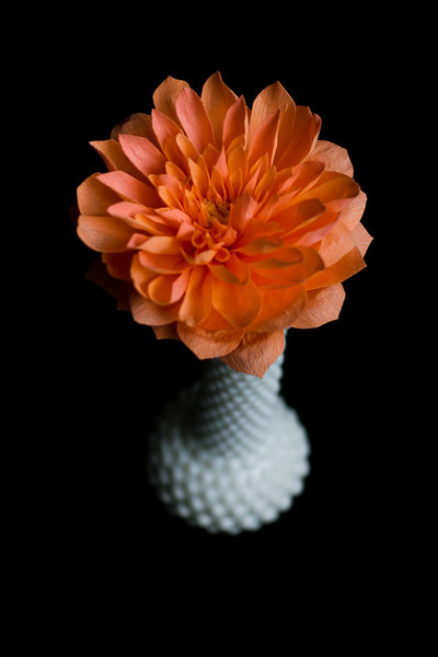 Seattle Paper Flower Designer