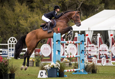 live oak international hunter jumper horse show