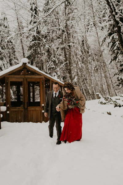 Mount Rainer Snow Elopement Planner