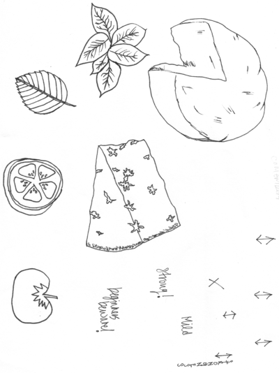 sketches cheese3