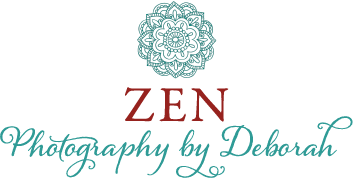 Zen Photography by Deborah captures beauty and essence on the Iron Range, in Duluth and up the North Shore.  Weddings Photography, Senior Portraits, Family Photography, Corporate and Business Photography