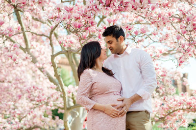maternity portraits cherry blossoms washington dc