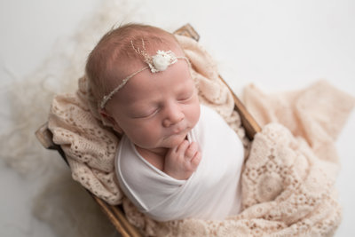 collierville baby photographer