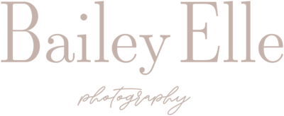 Bailey Elle Photography Wedding Engagment Photographer Indiana6