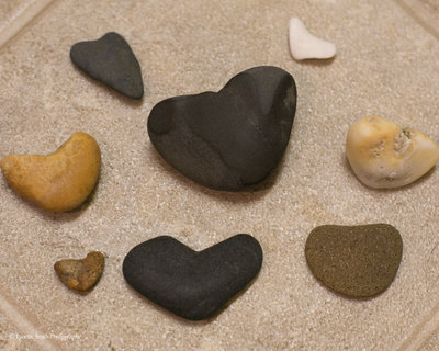 heart shaped rocks  Lynette Smith Photography