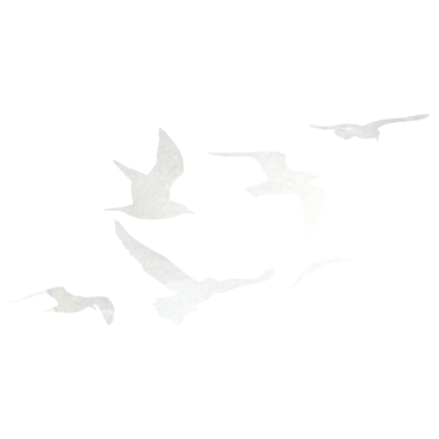 Treebird_bird-elements