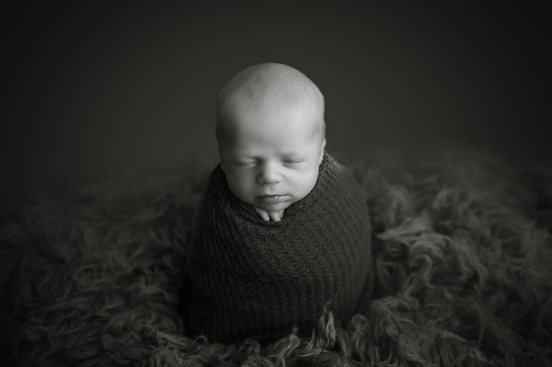 eagle-newborn-photographer