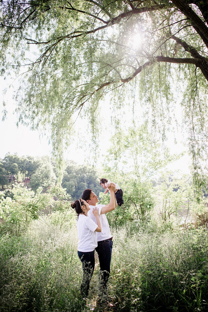 Asian family lifting their little boy in the air in front of a weeping willow at Cherokee Blvd park by Knoxville Wedding Photographer, Amanda May Photos.