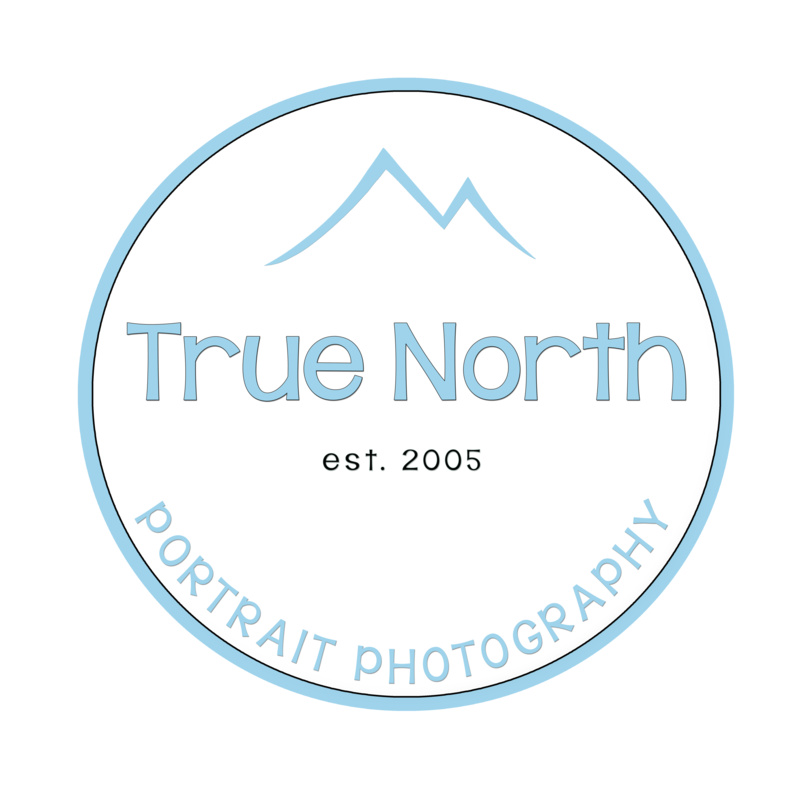 1 true North Logo 4n
