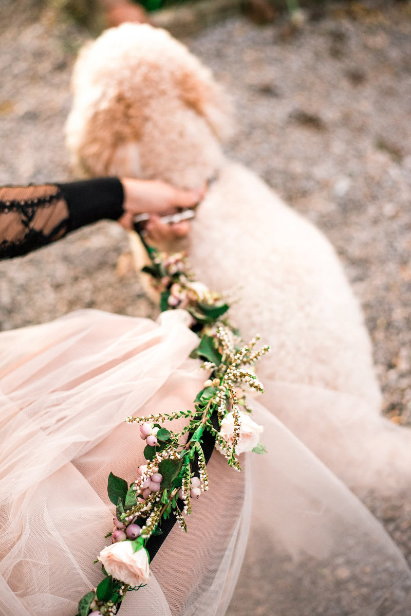 flower-dog-leash-wedding