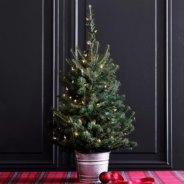 fresh-tabletop-christmas-tree-with-lights-1-o