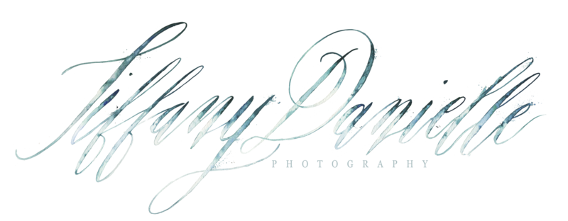 The Wells makery _ Tiffany Danielle Photography _ Photography Logo