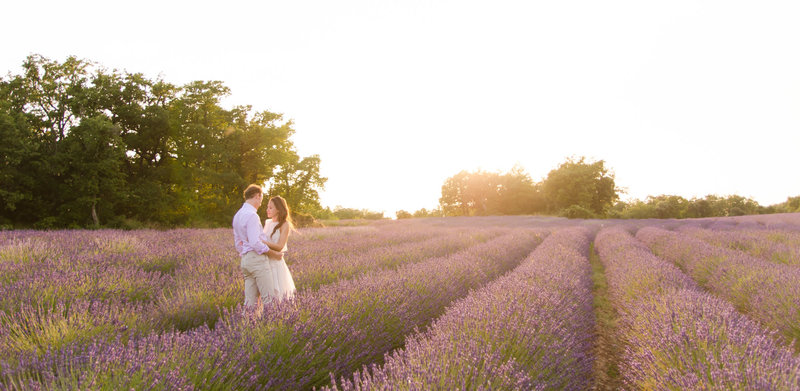 Lavender field - Engagement Shoot - Wedding