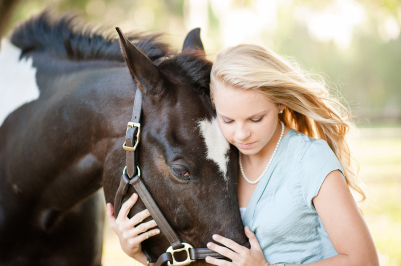 Horse Equine Equestrian Portraits Daytona
