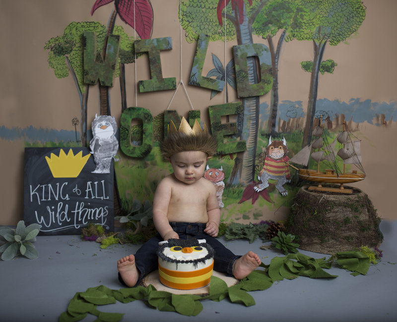 wild one cake smash photographer illinois chicago 60525