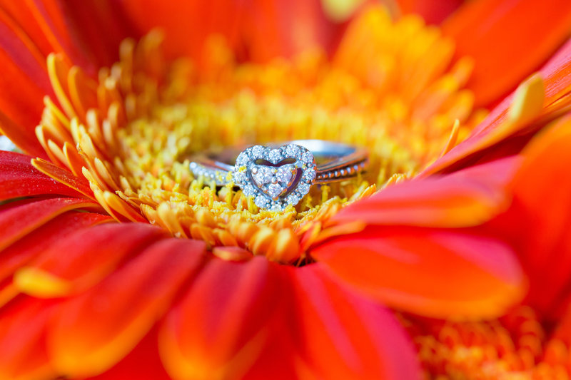 14 wedding photography Rings 4