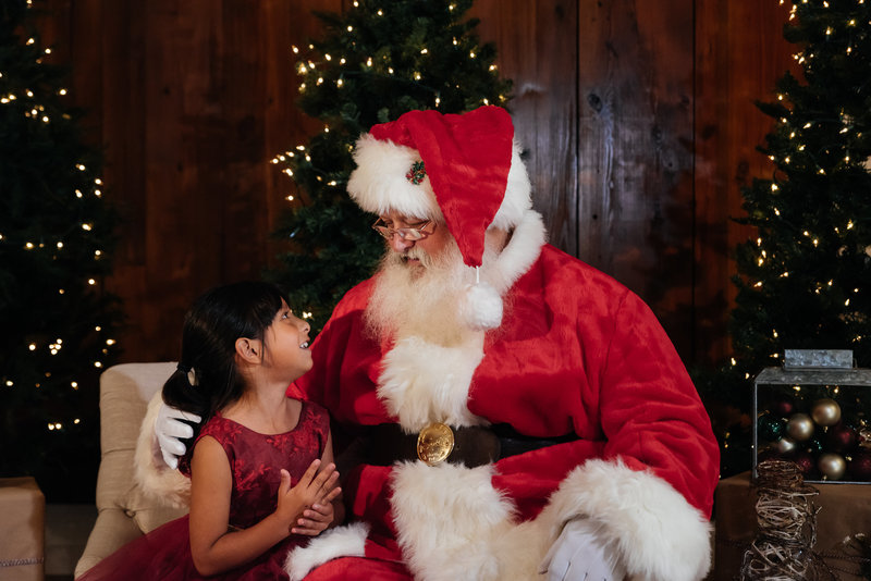 pictures-with-santa-lynnet-perez-photography-0062