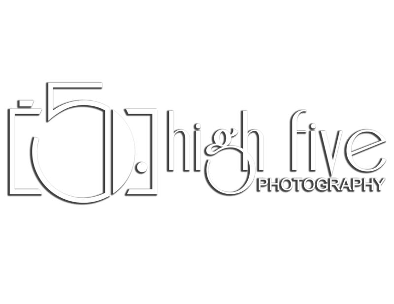 High-Five-Logo-2 whitedrop