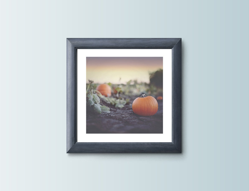 PumpkinPatch_8x8