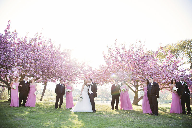 bridal party standing in front of cherry blossom trees  with sun flare