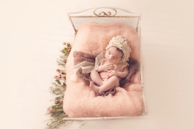 katy houston newborn photographer
