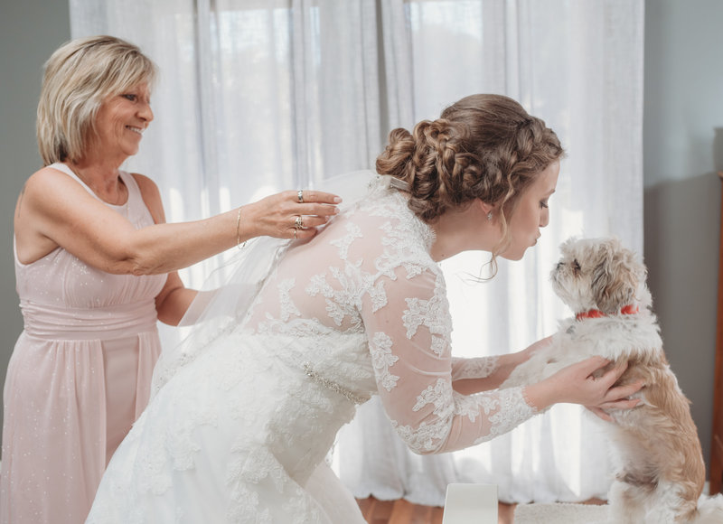wedding pet dogs