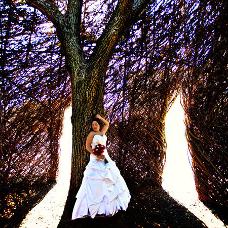 A wedding at Ku in a sculpture. Couple writes a great photography review