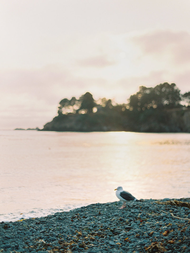 destination_california_mendocino_fine_art_wedding_photographer_bethany_erin-49