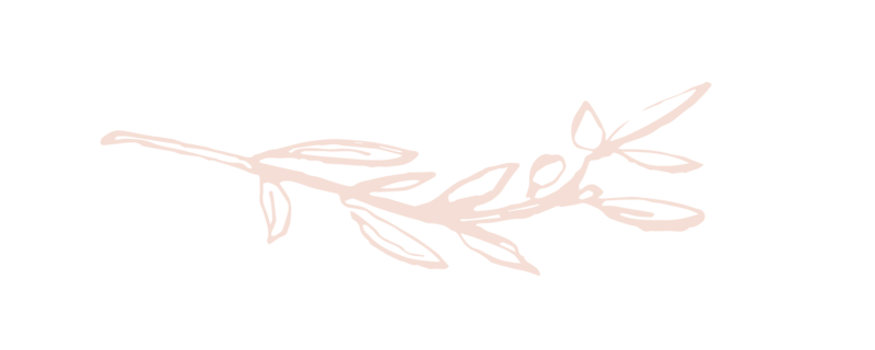 2018 Palette_Branch Soft Pink