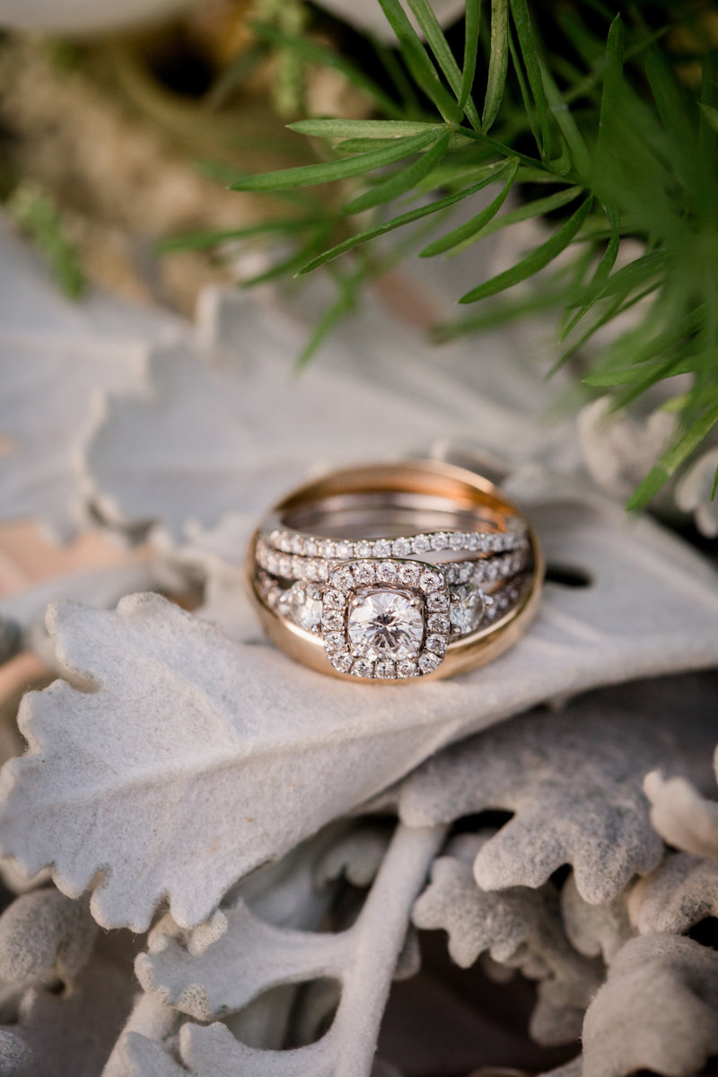 Rings sitting on the bridal bouquet by Knoxville Wedding Photographer, Amanda May Photos.