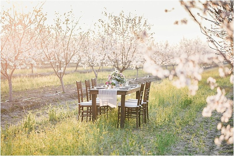 almond orchard inspiration_0014