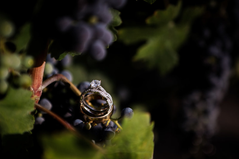 rings_oyster_ridge_grape_vines_santa_margarita_ca_by_wedding_photographer_cassia_karin_photography-104