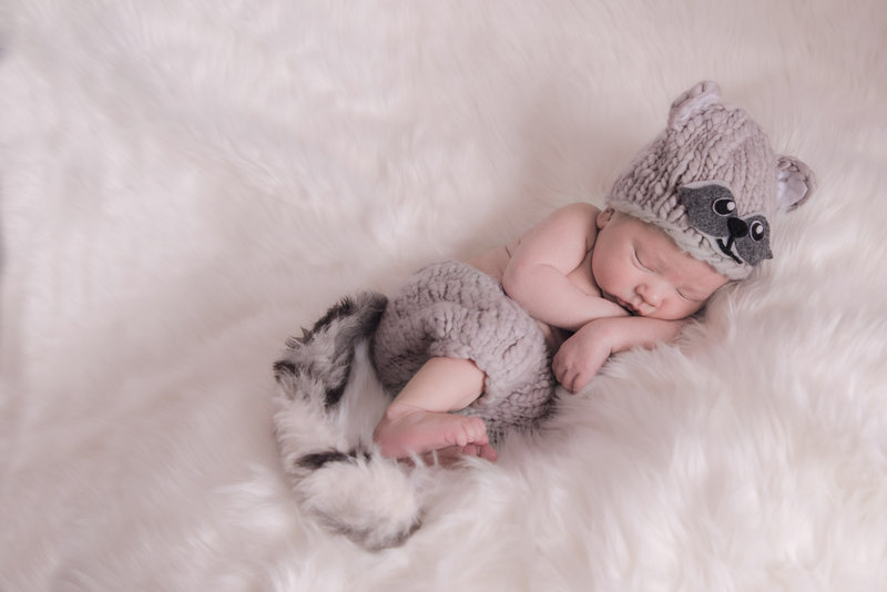 JandDstudio-baby-newborn-infant-studio-raccoon (3)