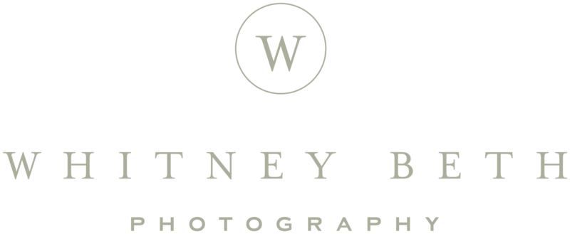 Whitney Beth Photography Wedding Engagement Portrait Photographer Minneapolis Minnesota1