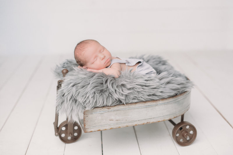newborn studio photography ilovethp