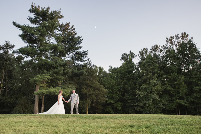 bride and groom portrait utilizing the trees on the venue property