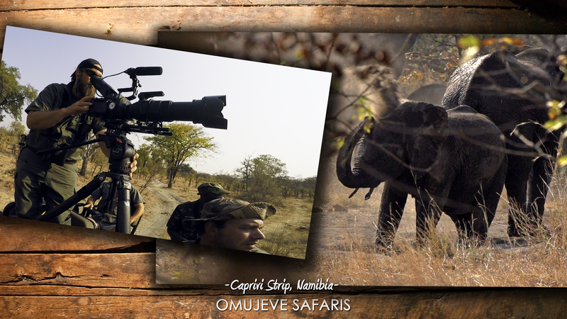 Raven 6 Studios in the field in Namibia filming elephants with Omujeve Safaris