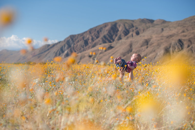 Richard at Borrego Springs Superbloom-Borrego Springs Superbloom-0103