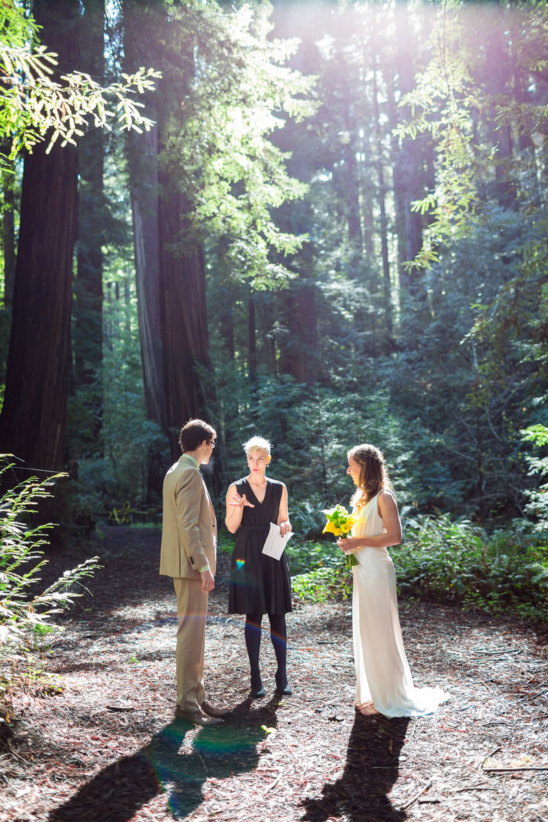 alice-che-photography-redwoods-elopement-san-francisco-wedding-photographer-experience