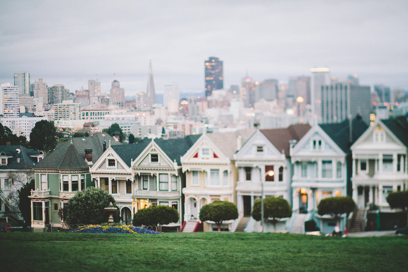 Painted_Ladies_Stephanie_Court_Photography
