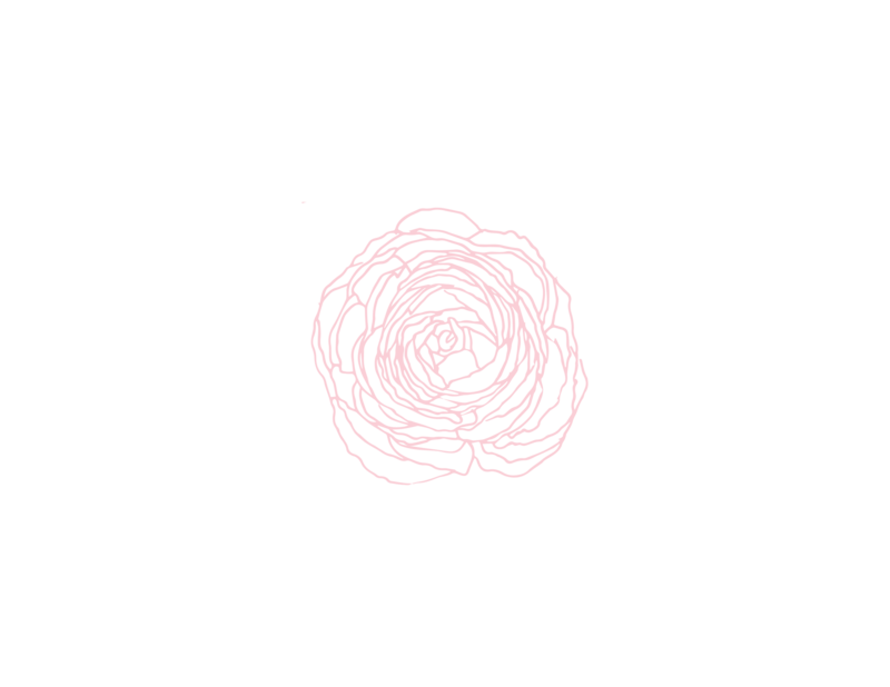 ranunculus-08