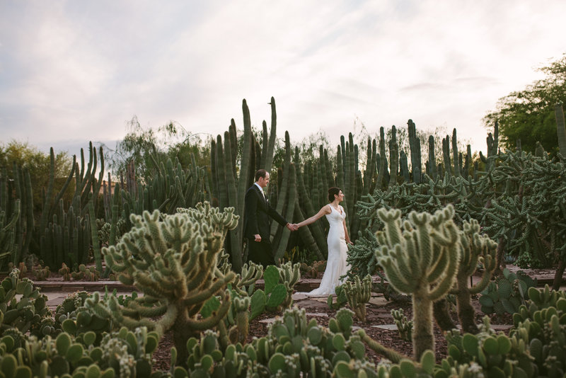 Desert Wedding at Phoenix Botanical Gardens